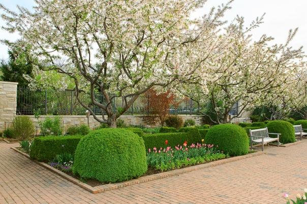 Garden_15-0411_4828